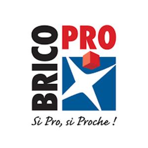 Logo Brico Pro